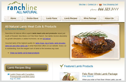 ranchline web design project
